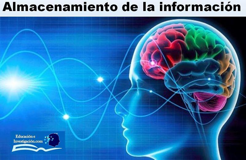 Almacenamiento de la Información